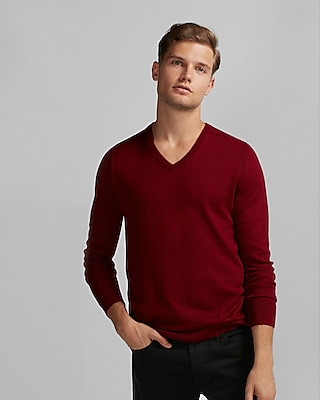 Express Mens Merino Wool Blend Thermal Regulating V-Neck Sweater