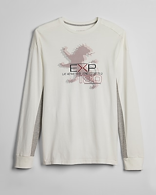 Express Mens Alpine Lion Long Sleeve Graphic Tee