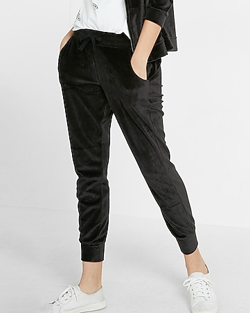 express one eleven velour jogger pant