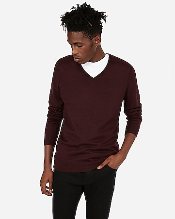 843ee08f777 Express View · merino wool-blend thermal regulating v-neck sweater
