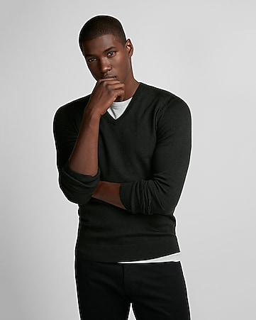 10027f496 Express View · merino wool-blend thermal regulating v-neck sweater