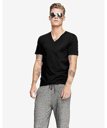 3b26a19d1efe5 Express View · slim stretch v-neck t-shirt